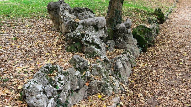 Rochas, folhas e o outono fotografia de stock