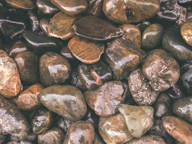 Rochas na terra com alguma água neles fotografia de stock royalty free
