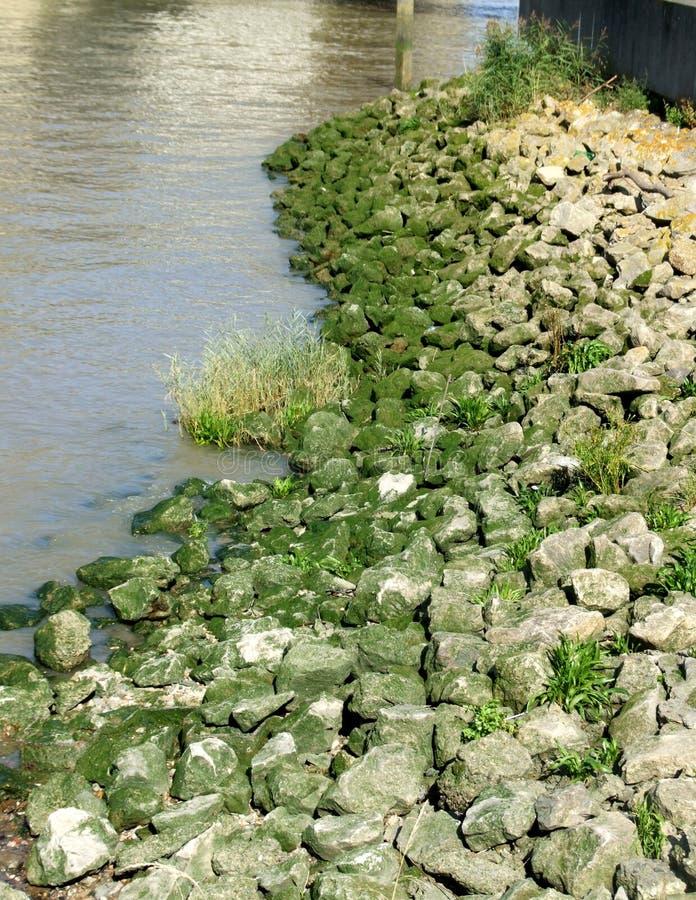 Rochas por Água 1 imagem de stock