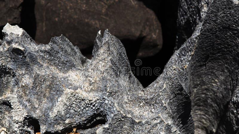 Rochas pretas afiadas no marco de Ankarana Tsingy, Madagáscar fotografia de stock royalty free