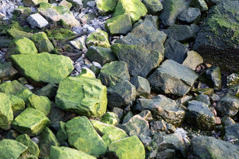 Rochas verdes fotografia de stock