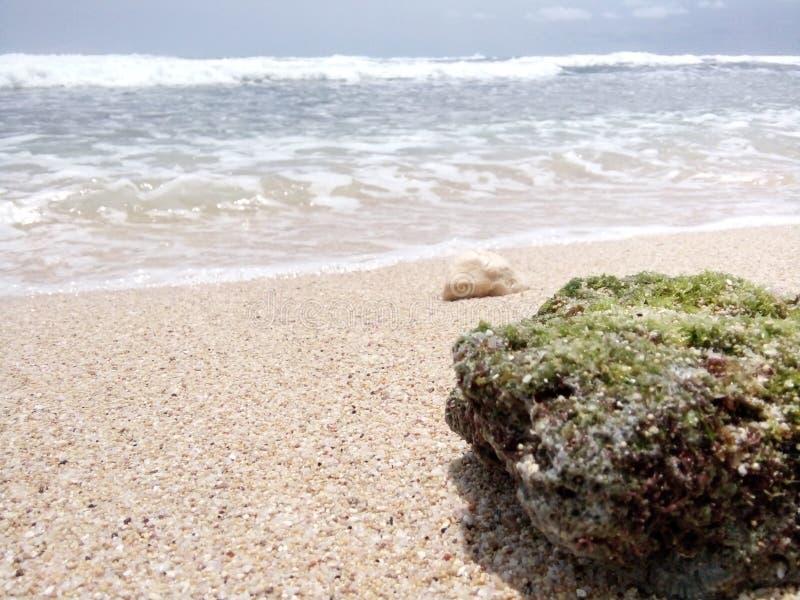 Roche à la plage photos stock