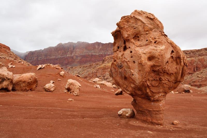 Roche équilibrée bizarre, gorge de marbre, Arizona photographie stock