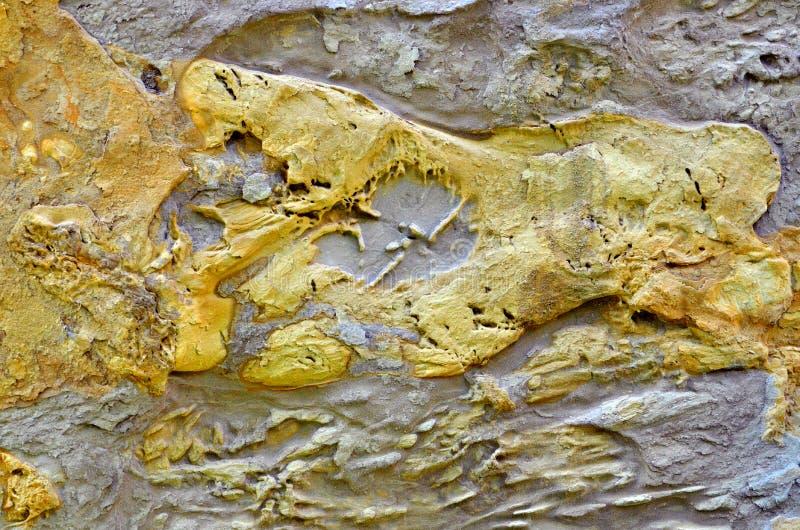 Download Roche image stock. Image du timber, âge, roche, limestone - 56480903
