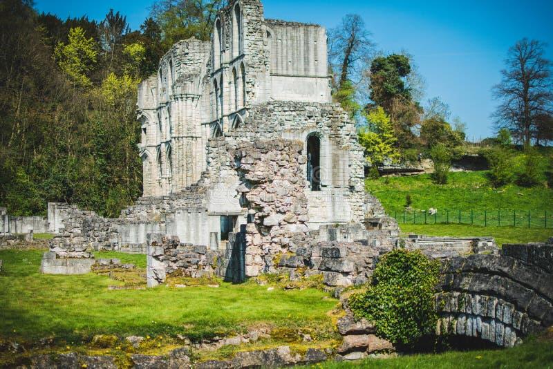 Roche Abbey Ruins Maltby Regno Unito fotografie stock libere da diritti