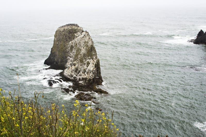 Roche d'océan photographie stock libre de droits