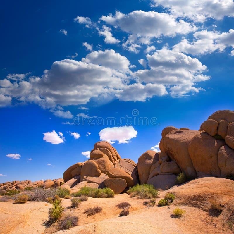 Roche de crâne en Mohave la Californie de parc national d'arbre de Joshua image stock