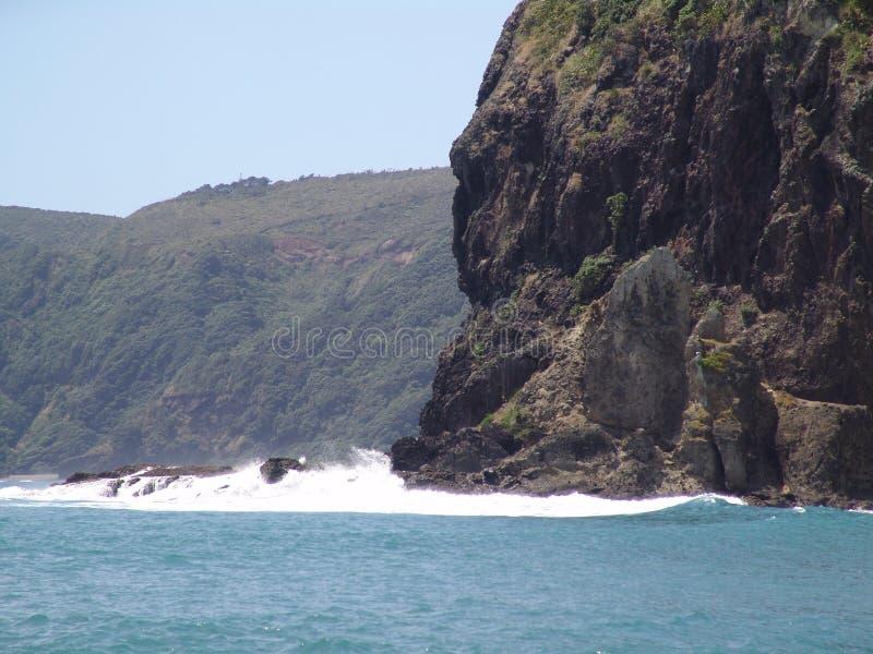 Roche de lions de plage de Piha et au-delà image stock