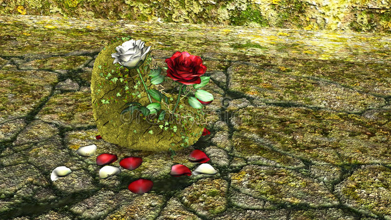 Roche en forme de coeur avec les roses rouges et blanches au-dessus d'un fond avec des roches images libres de droits