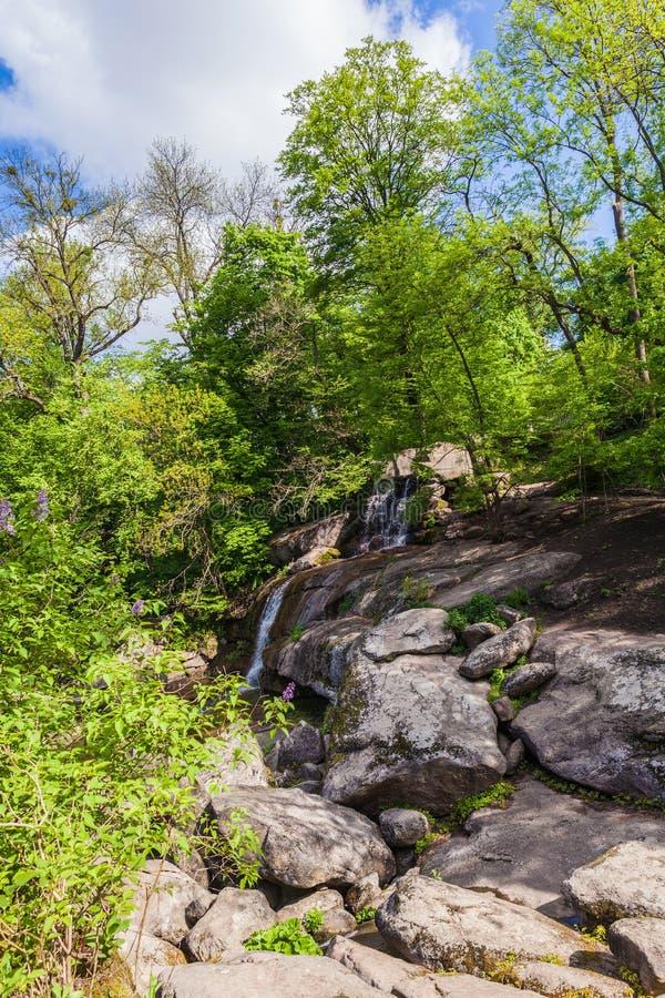 Roche en pierre avec élever les arbres verts photos stock