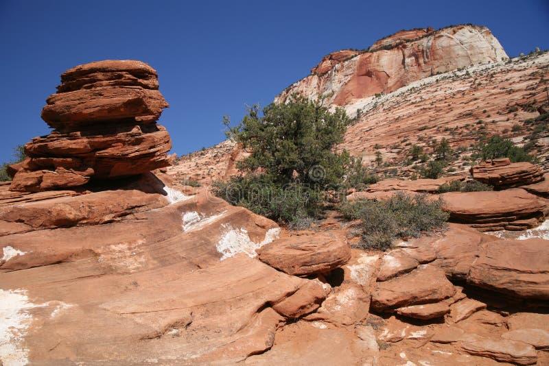 Roche en Zion National Park, Utah, Etats-Unis photos libres de droits