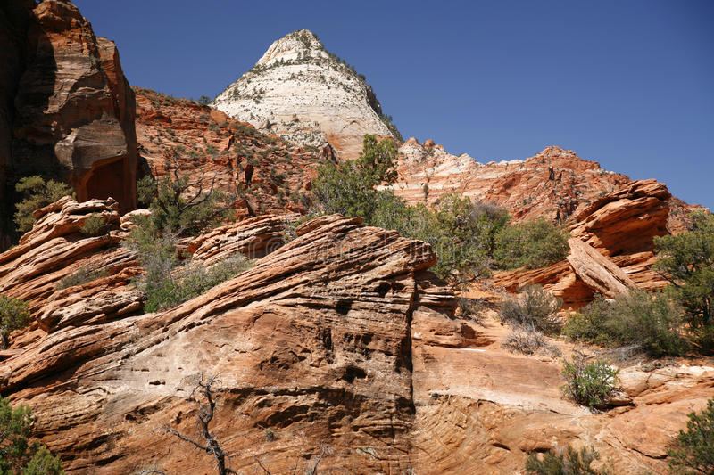 Roche en Zion National Park, Utah, Etats-Unis photos stock
