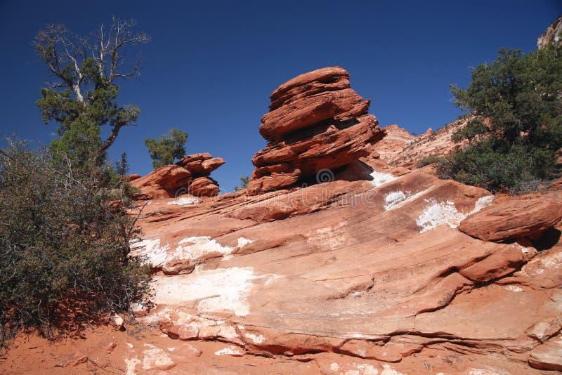 Roche en Zion National Park, Utah, Etats-Unis image libre de droits