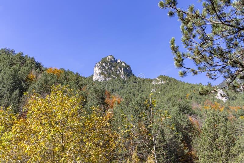 Roche isolée entre les collines couvertes de forêts avec le feuillage d'automne photos libres de droits
