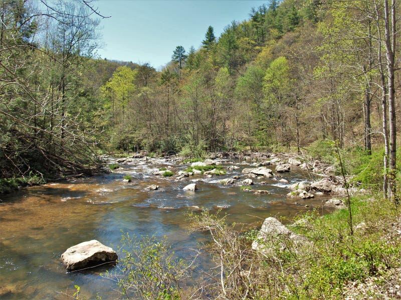 Rochers en Whitetop Laurel Creek photographie stock libre de droits