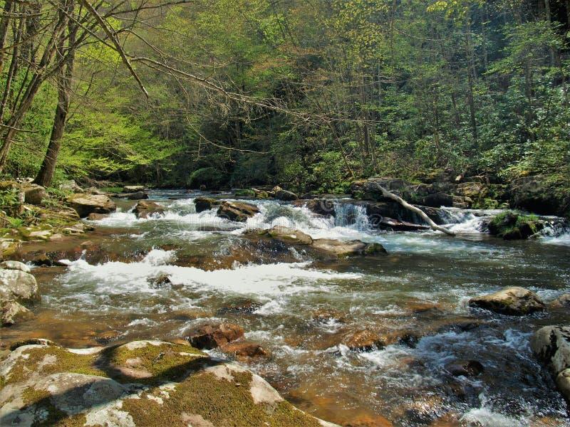 Rochers en Whitetop Laurel Creek photos libres de droits