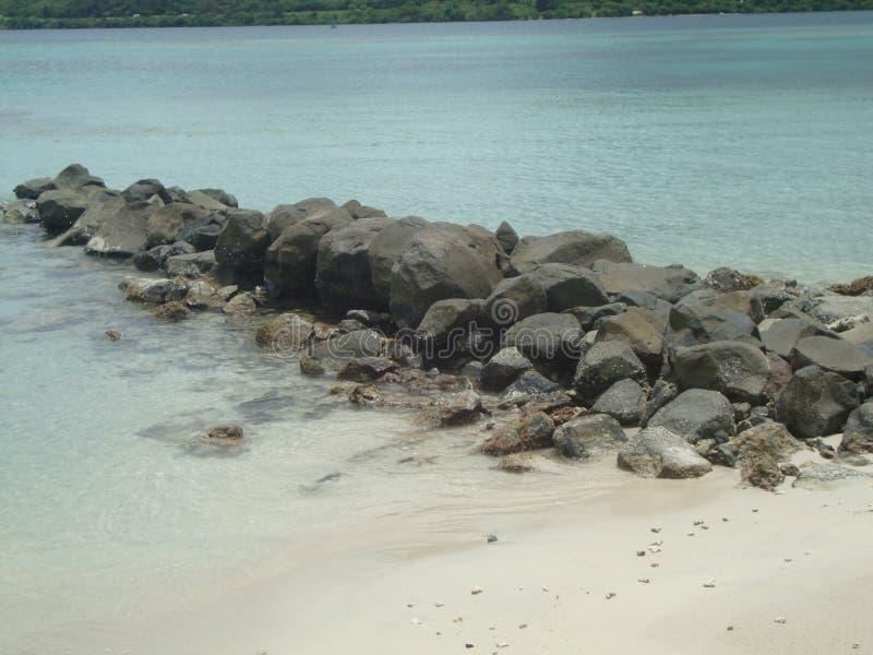 Rochers plage. Rochers sur la plage de saint anne en martinique royalty free stock images