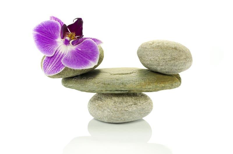Roches d'équilibre avec l'orchidée photographie stock