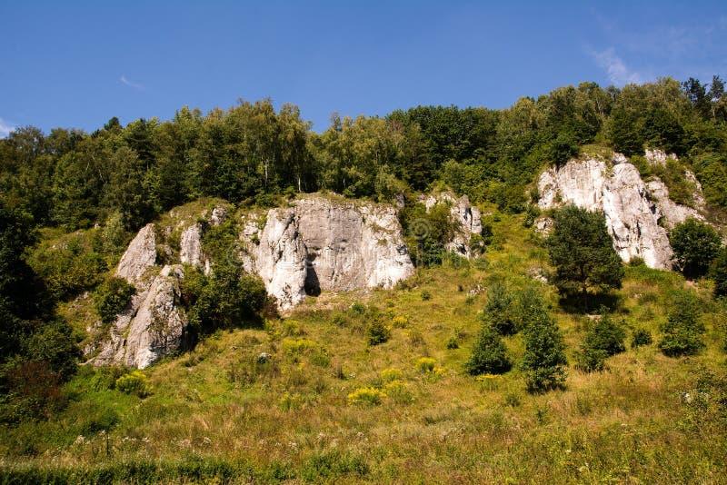 Download Roches De Chaux En Vallée De Kobylanska (Pologne) Image stock - Image du géologie, arbres: 76088281