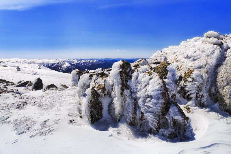 Roches de glace de galopin de dos de SM photos stock