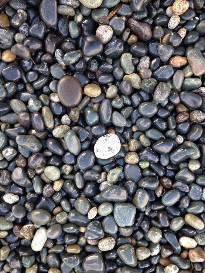 Roches de plage photographie stock