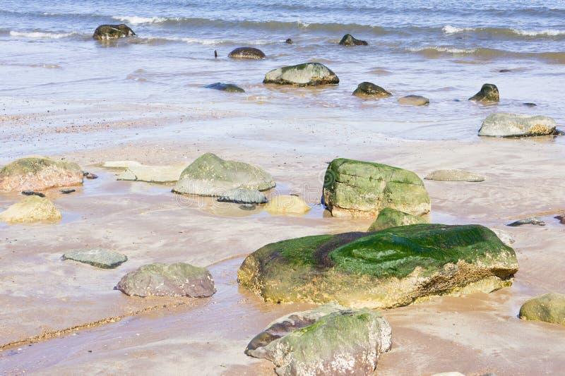 Download Roches de plage image stock. Image du roches, abstrait - 45355491