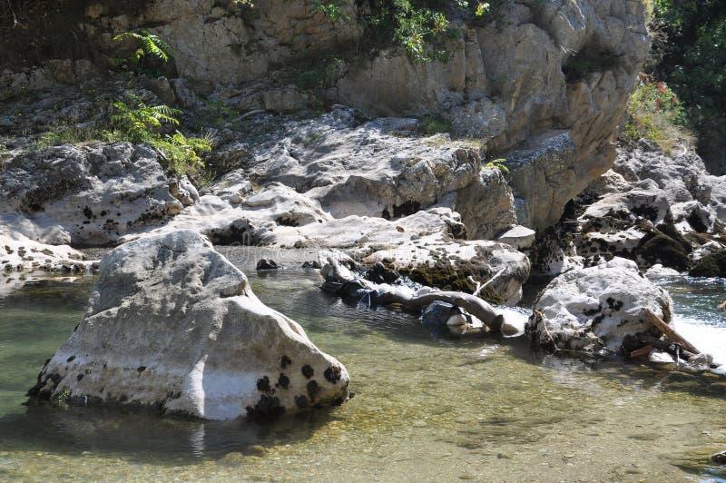 Roches en rivière images libres de droits