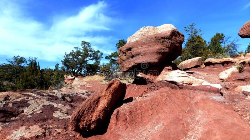 Roches et arbres dans le paysage du Colorado au jardin des dieux photos stock