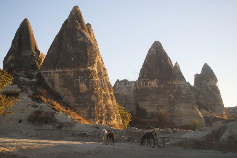 Roches et cheval dans Cappadocia photographie stock