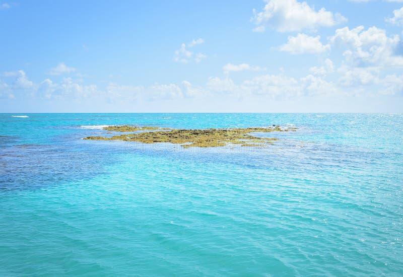 Roches et coraux en mer de PB de Joao Pessoa, Brésil images stock