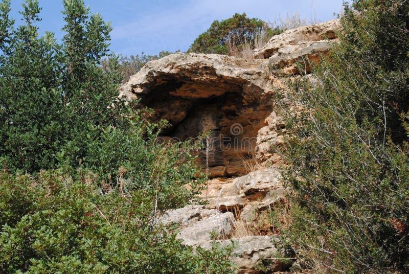 Roches et usines sèches de la nature grecque photos stock