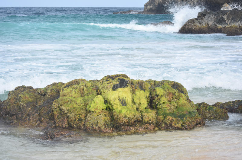 Roches et vagues du côté est d'Aruba photos libres de droits
