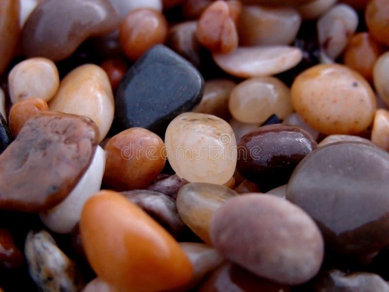Roches humides de plage photo libre de droits