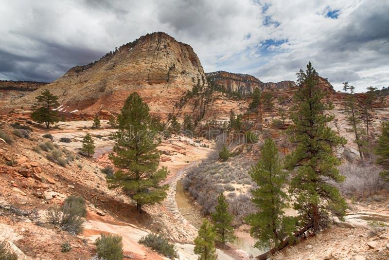 Roches rouges et un courant dans Zion National Park en Utah photographie stock libre de droits