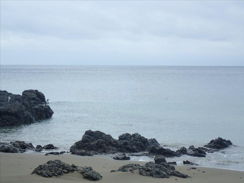 Roches sur la plage photo libre de droits
