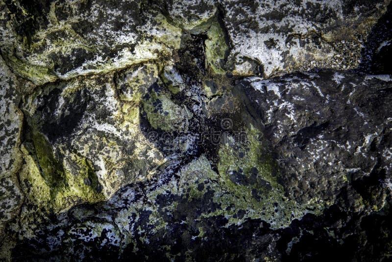 Roches sur le bord de la mer Pacifique photo libre de droits