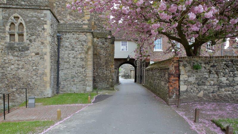 ROCHESTER, UK: Ogródy na zewnątrz katedry z średniowiecznymi ścianami i wiosna kolorami obraz stock