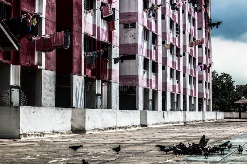 Rochor大厦 免版税库存图片