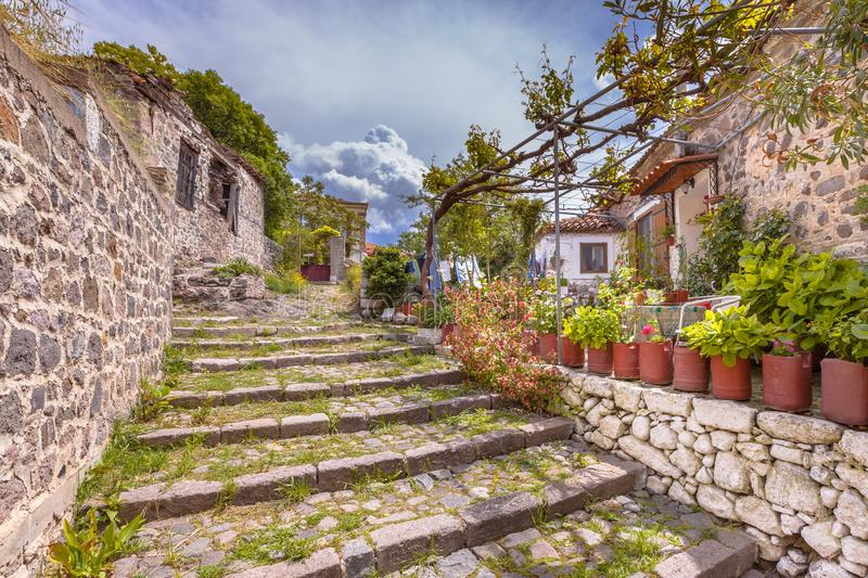 Rock alleyway staircase with gardens on Lesbos island Greece. Stone alley staircase with green plants in the village of Molyvos, Lesbos, Greece stock images