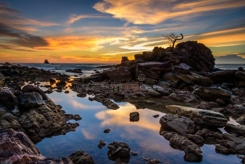 The rock bonsai sunset stock photos