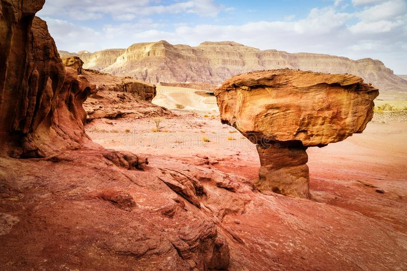 Rock called mushroom in dry Negev desert, Israel. Geological rock formation called mushroom surrounded with red rocks in Timna park in dry sandstone Negev desert stock photos