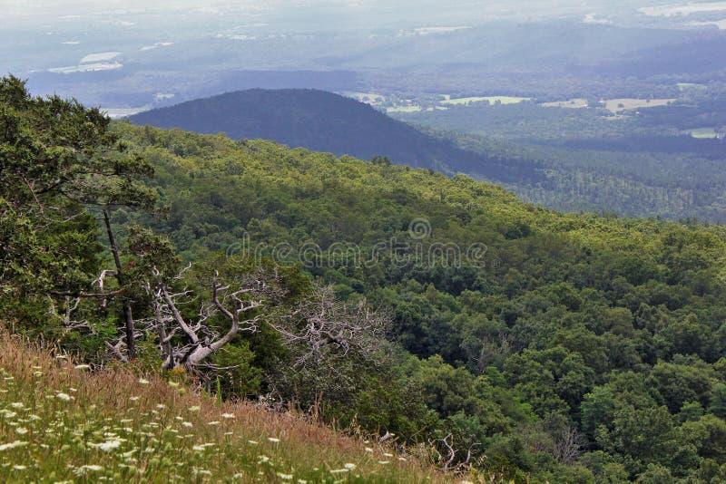Rock Climbing and Hang Gliding area at Mount Magazine. State Park, Paris, Arkansas. Mount Magazine State Park is on the state`s tallest mountain, the 2,753-foot stock photo