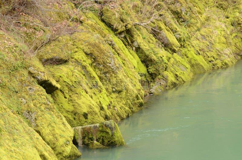 Download Rock Creek imagen de archivo. Imagen de liquen, actual - 42436215