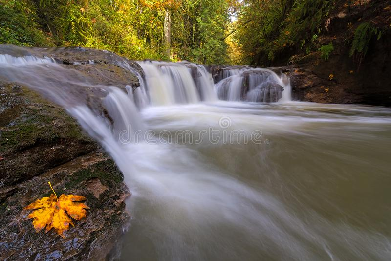 Rock Creek in Happy Valley Oregon USA. Rock Creek in Happy Valley Clackamas County Oregon in Fall Season United States America stock photography