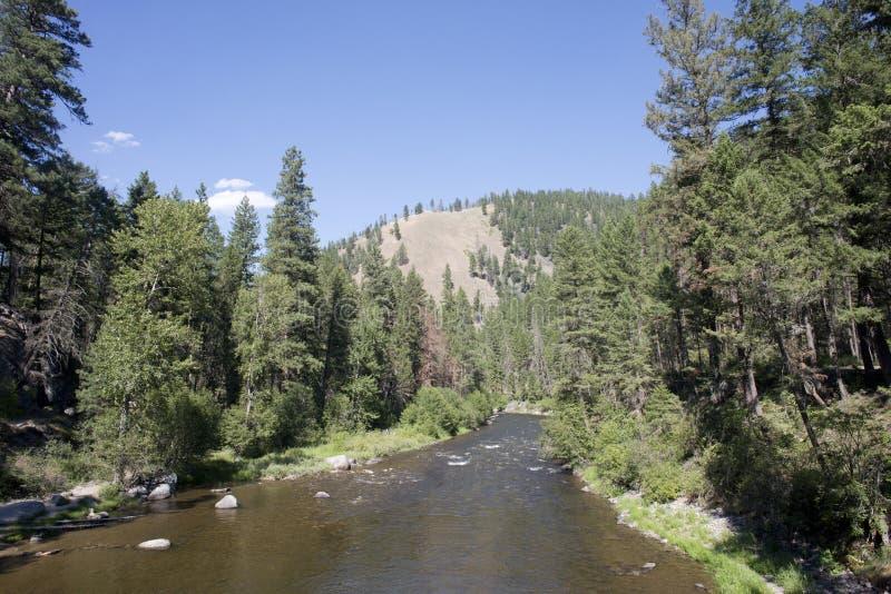 Rock Creek Montana royaltyfri fotografi