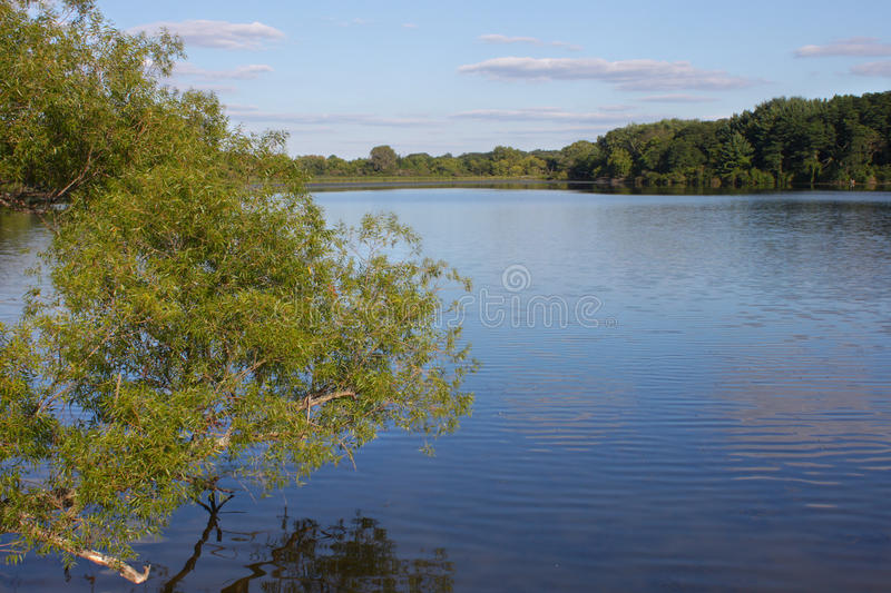 Rock Cut State Park - Illinois. View of Pierce Lake at Rock Cut State Park in northern Illinois royalty free stock photo
