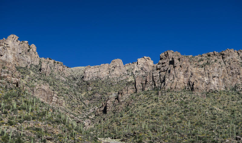 Rock face and saguaro cacti against a blue sky in Sabino Canyon, Tucson, Arizona royalty free stock photography