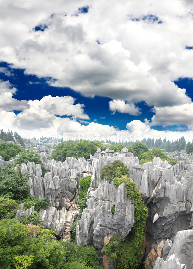 Free Rock Forest Near Kunming City Royalty Free Stock Image - 9409066