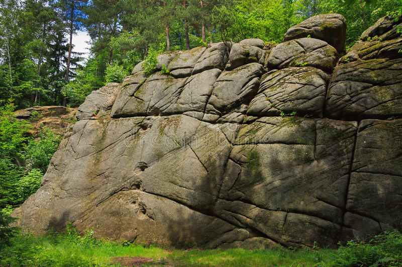 Rock in forest stock photos