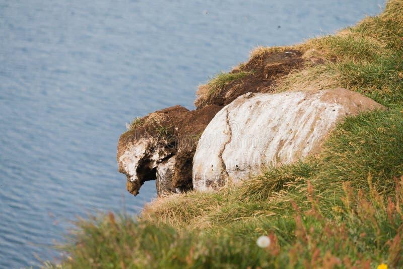 Rock formade som en fågel i Island arkivbilder